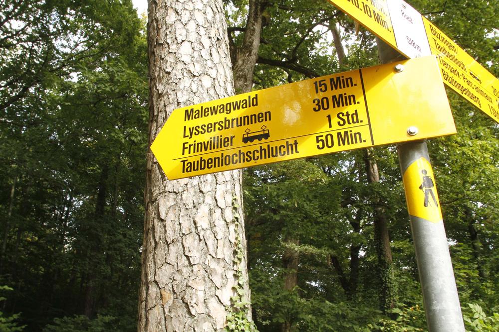 FOTO: PETER GERBER, 17.09.2010, Ried (BE):Weg zur Taubenschlucht, diesen Weg gin Peter Hans KneubŸhl kurz vor seiner Verhaftung